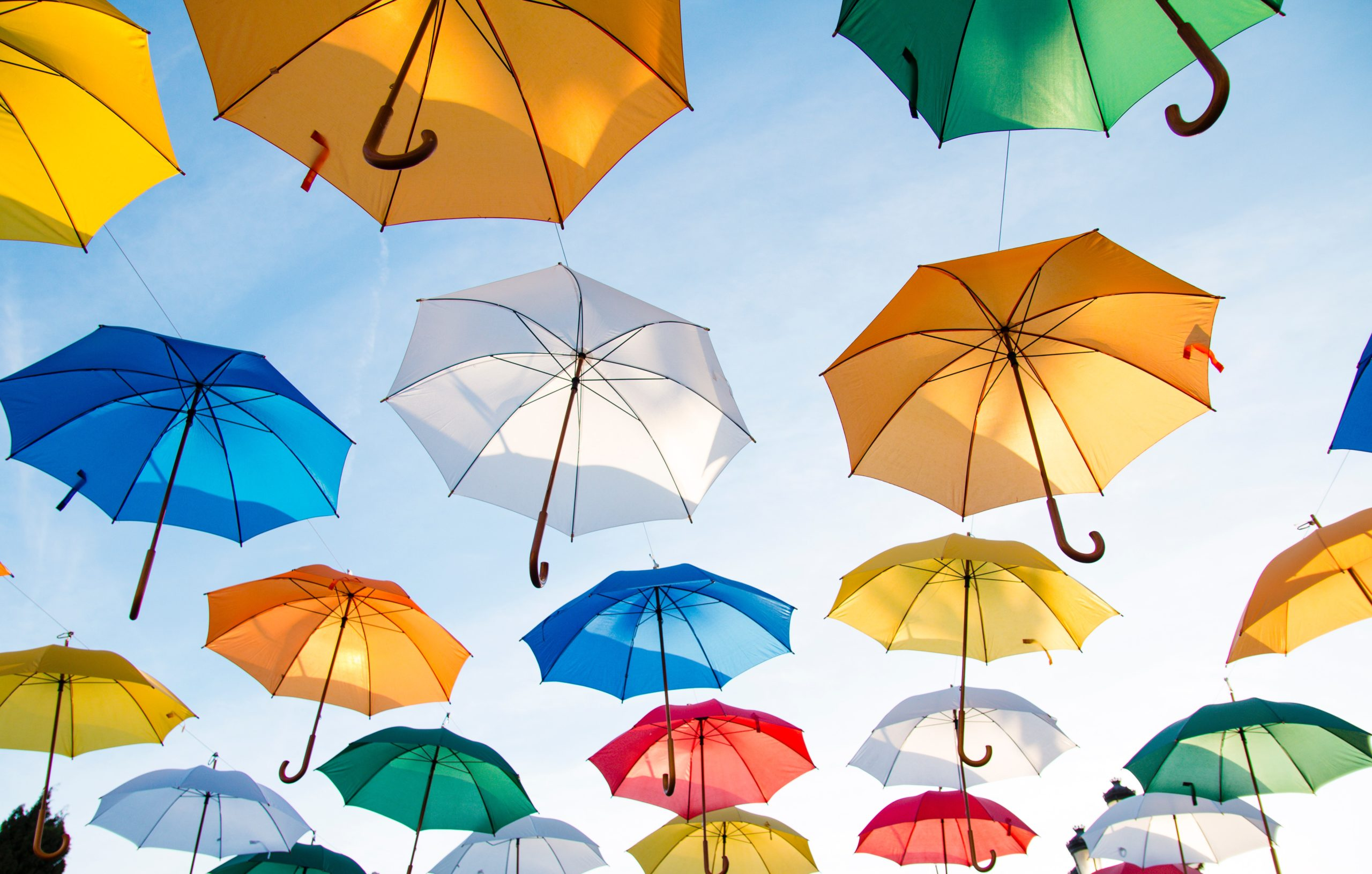 Insurance Schemes - Some Things That You Should Know About